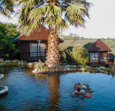 Port Elizabeth Bed and Breakfast Accommodation